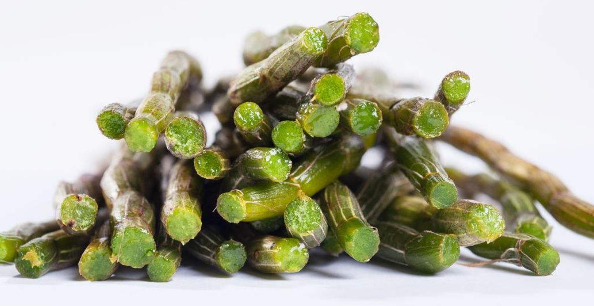铁皮石斛常见吃法