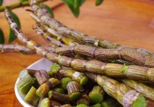 石斛的生长环境是怎样的?