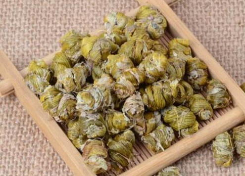 霍山米斛瓶苗是什么?