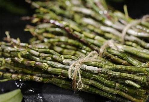 石斛采收季节怎么防治病虫害?