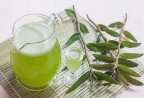 铁皮石斛能和野菊花一起泡茶吗?