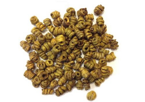 铁皮石斛怎样选苗?