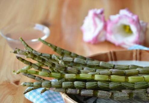 铁皮石斛种植为什么要用基质?