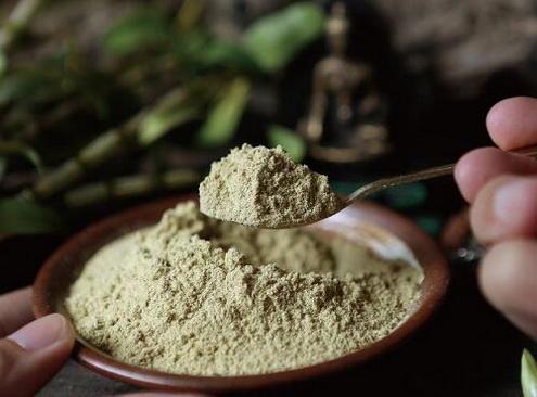铁皮石斛为什么可以成为肠胃药?